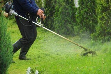 косить траву, обрезать деревья, косить траву в Польше