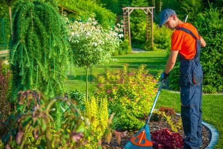 Otwock, садовник, садовник в Польшу, работать садовником, садовником в Польше