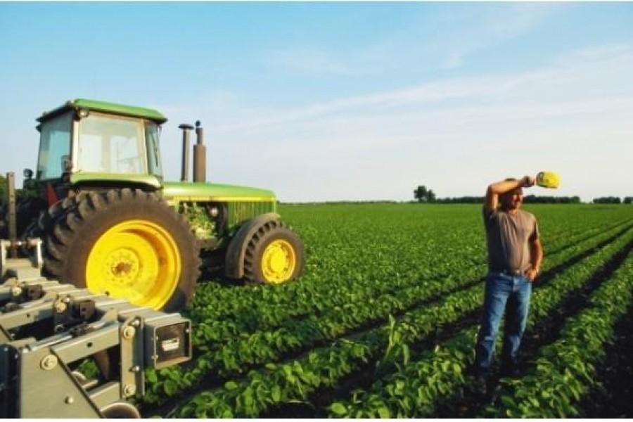 7050, Rogożno, фермер, помощник фермера, работать фермером, фермер в Польшу