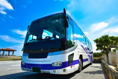 2667, водитель автобуса, работать водителем автобуса, водитель в Польшу