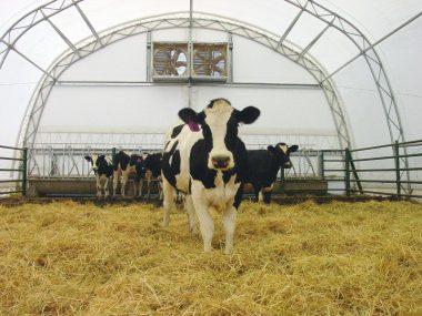 фермер, актуалтная вакансия фермер, фермер в Польшу, 9824
