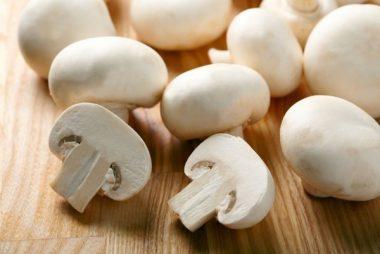 сбор грибов, актуальная вакансия сбор грибов, 3835, актуальная вакансия в Польше - собирать грибы